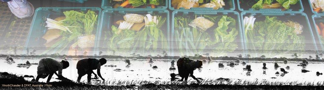 Asia Africa Agribusiness Forum